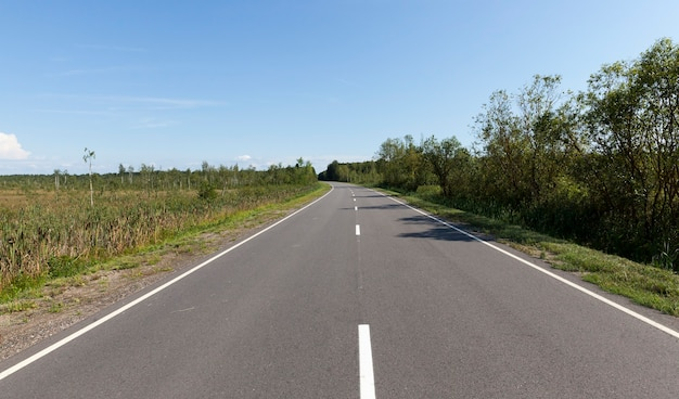Asphaltstraße frühling durch wälder und sümpfe