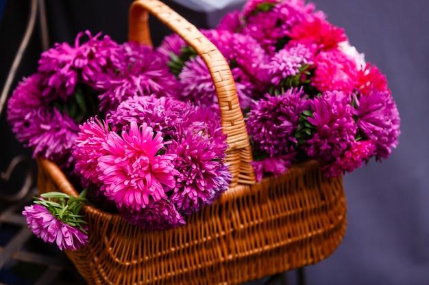 Aster blüht purpurrotes rotes rosa weiß des blumenstraußes auf einem holz