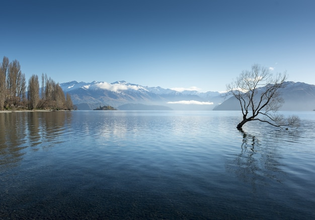 Atemberaubende aufnahme des lake wanaka im dorf wanaka, neuseeland