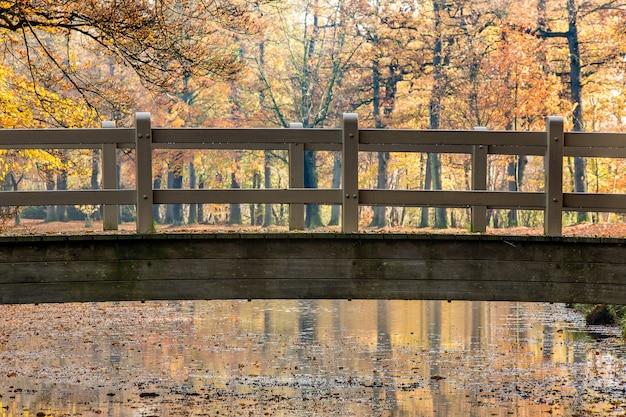 Atemberaubende aufnahme einer holzbrücke über einem see in einem park voller bäume