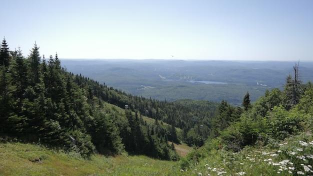 Atemberaubende aussicht auf baumbedeckte berge im mont tremblant nationalpark in lac lajoie, kanada