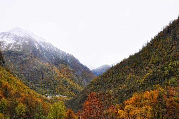Atemberaubende aussicht auf berge mit bunten fallbäumen vor einem nebligen hintergrund