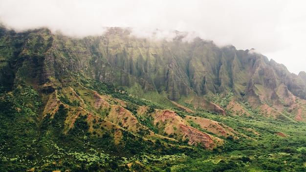 Atemberaubende aussicht auf die nebligen berge bedeckt mit bäumen, die in kauai, hawaii gefangen genommen wurden