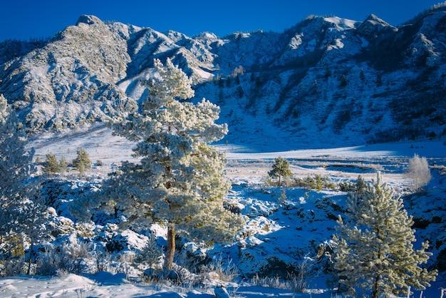 Atemberaubende aussicht auf die weihnachtsgeschichte der bergkette in den alpen