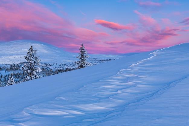 Atemberaubende aussicht auf einen mit schnee bedeckten wald während des sonnenuntergangs in norwegen