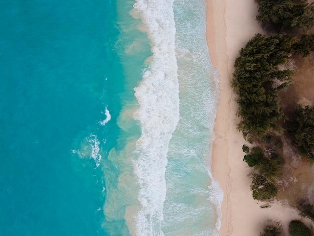 Atemberaubende hawaii-landschaft mit ozean