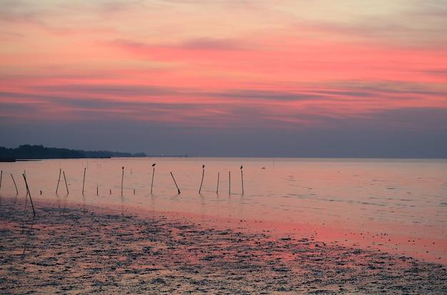 Atemberaubender blauer und rosa farbsonnenaufgang-himmel über dem ruhigen meer des golfs von thailand