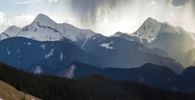 Atemberaubender panoramablick auf die herrlichen nebligen karpaten, bedeckt mit immergrünem wald an einem nebligen ruhigen morgen oder abend unter einem dunklen, bewölkten himmel. gebirgsschnee bedeckte spitzen im abstand.