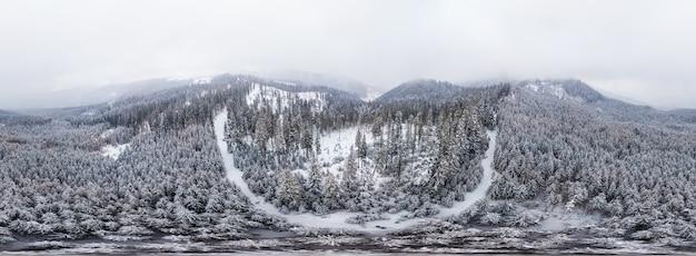 Atemberaubendes skipanorama aus weißen, schneebedeckten klippen mit bäumen, die an einem kalten wintermorgen von dichtem nebel bedeckt sind