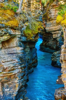 Athabasca falls canyon im herbst jaspis nationalpark kanada