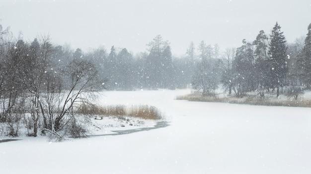 Atmosphärischer winterlandschaftsfrosttag auf dem see
