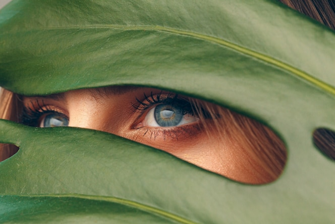Attraktive junge frau, die sich hinter monstera-blatt versteckt