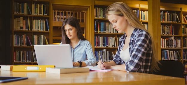 Attraktive studenten, die in der bibliothek an der universität arbeiten