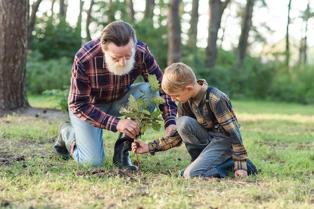 Attraktiver bärtiger älterer großvater mit seinem reizenden enkel auf grünem rasen, der eichensämling pflanzt und mit wasser gießt.