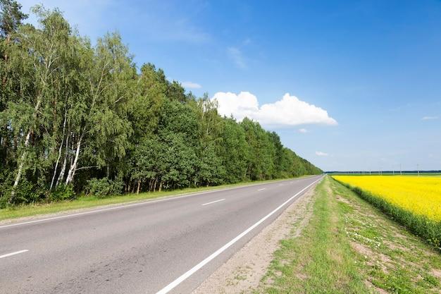 Auf der asphaltstraße rechts wächst gelb blühender raps, links bäume, sommerlandschaft