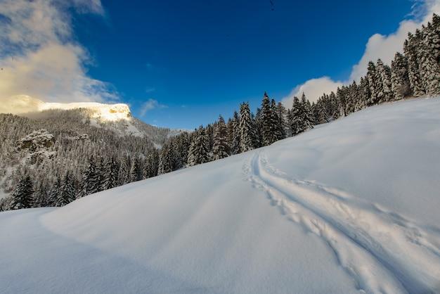 Auf einem bergweg im schnee mit ski und robbenfellen