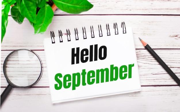 Auf hellem holzhintergrund eine lupe, ein bleistift, eine grüne pflanze und ein weißes notizbuch mit text hallo september. geschäftskonzept