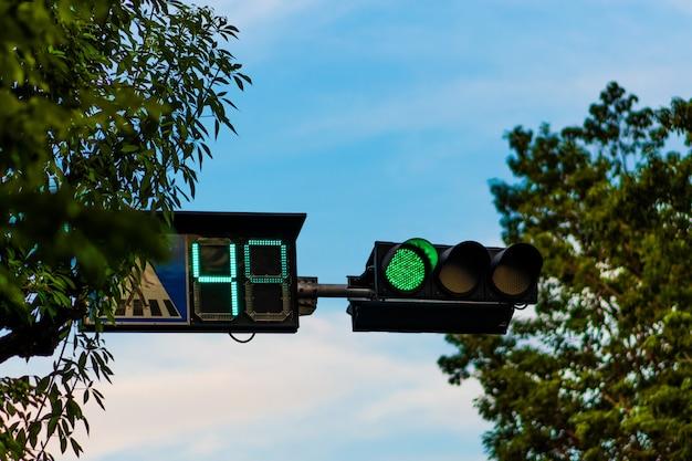 Auf masten montierte ampeln werden grün und nummeriert.