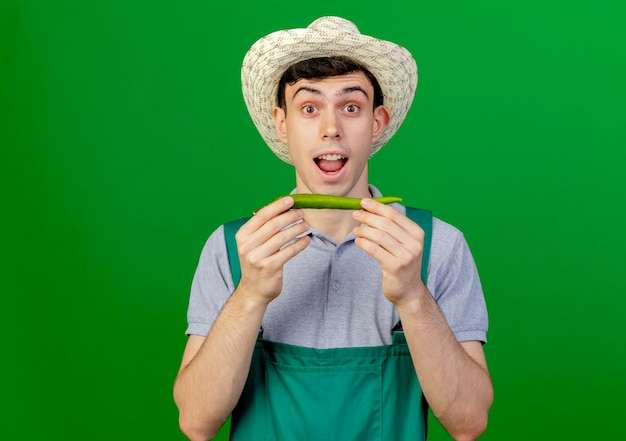 Aufgeregter junger männlicher gärtner, der gartenhut trägt, hält heißen pfeffer lokalisiert auf grünem hintergrund mit kopienraum