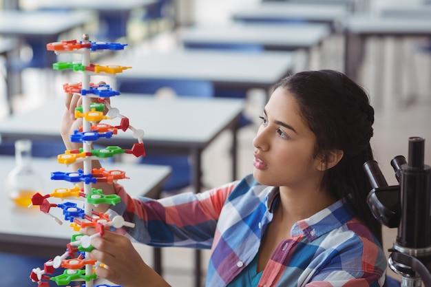 Aufmerksames schulmädchen experimentiert molekülmodell im labor