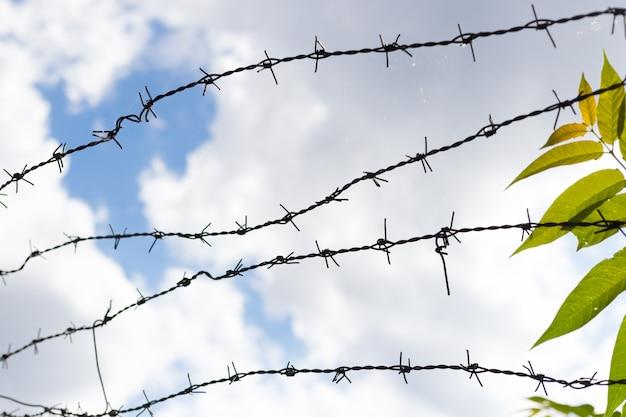 Aufrechte ansicht des metallstacheldrahtzauns über blauem himmel mit wolken und grüner pflanze, sicherheits- und schutzkonzept.