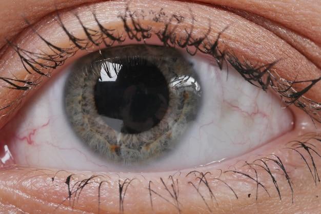 Augenmakro. frauenauge. makrobild des menschlichen auges.