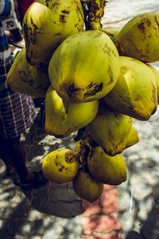 Ausgewählte haufen kokosnüsse