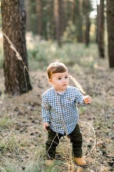 Außenporträt des niedlichen kleinen babykleinkindjungen, der lässiges kariertes hemd und dunkle hosen trägt und spaß im schönen herbstkiefernwald bei sonnenuntergang hat und mit tannenzapfen spielt