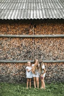 Außenporträt von drei kindermädchen, die mit großer roter katze spielen