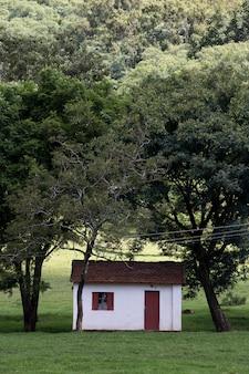 Ausstattung eines typischen bauernhofes des bundesstaates sao paulo
