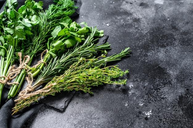 Auswahl an frischen kräutern koriander, rosmarin, thymian, dill, petersilie. ein paar frische gewürze.