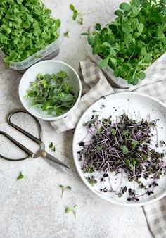 Auswahl an mikrogrüns auf holztisch. gesunder lebensstil