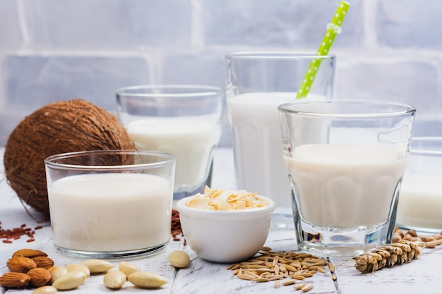 Auswahl an milchfreier veganer milch und zutaten