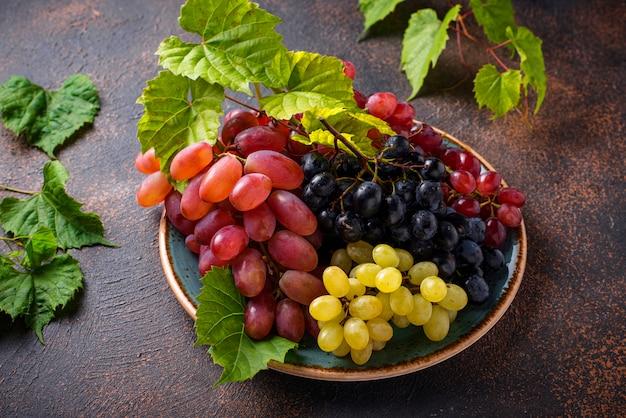 Auswahl an verschiedenen traubensorten