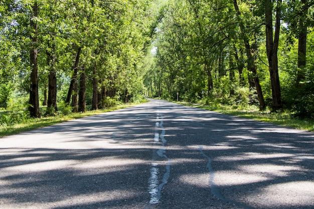 Autobahn- und straßenlandschaft und -ansicht, schatten und sonnenlicht in georgia
