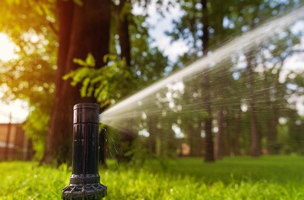 Automatische sprinkleranlage, die den rasen bei sonnenaufgang bewässert.