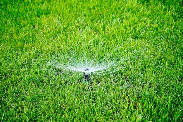 Automatische sprinkleranlage, die den rasen vor grünem gras bewässert