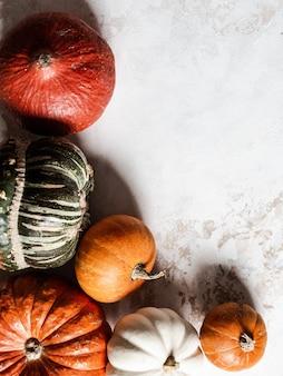 Autumn pumpkins von verschiedenen größen und von farbdraufsicht. copyspace