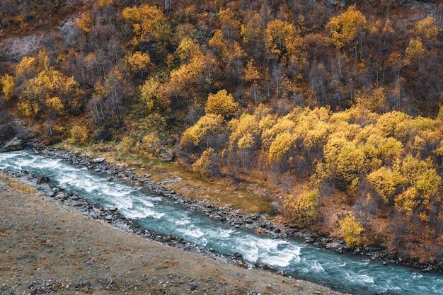 Autunm natur von kazbegi, georgia