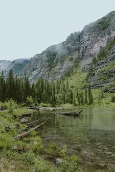 Avalanche lake in der nähe eines waldes mit hohen bäumen und einem berg