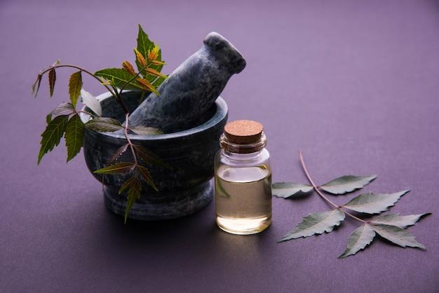 Ayurvedische antibakterielle kräuter neem oder flieder oder azadirachta indica mit öl in flasche mit mörser, einzeln auf einfarbigem hintergrund, selektiver fokus