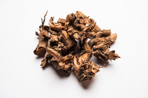 Ayurvedische chitrak- oder sheetraj-wurzeln, auch bekannt als plumbago zeylanica