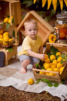 Baby, das zitronen isst und limonade im freien im sommer beim picknick trinkt