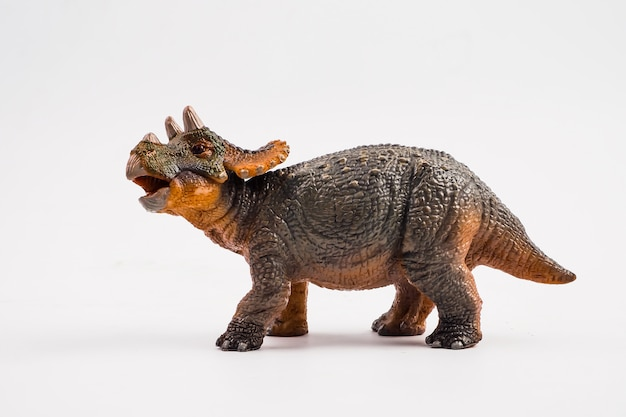 Baby triceratops, dinosaurier auf weißem hintergrund