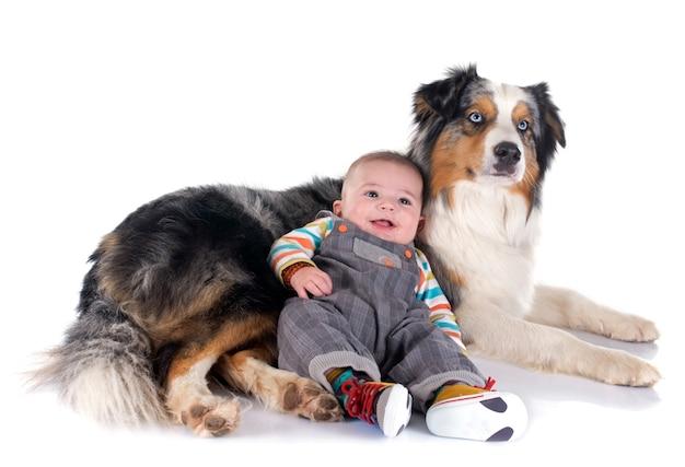 Baby und australischer schäferhund