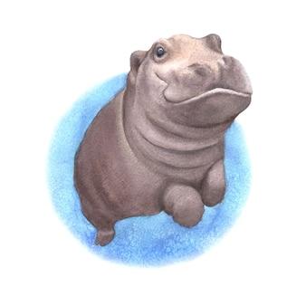 Babynilpferdschwimmen in der flussaquarellillustration lokalisiert