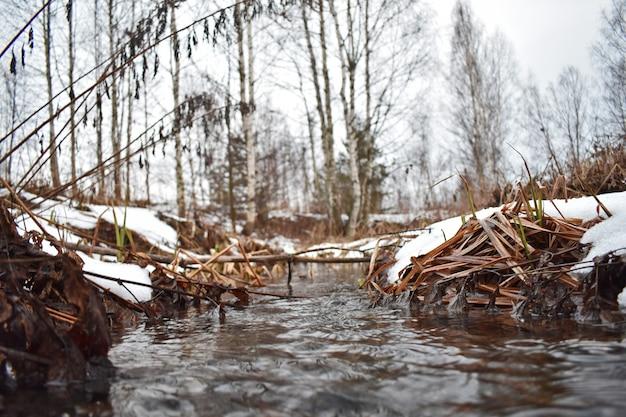 Bach friert im winter im wald nicht zu