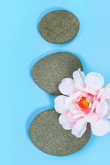Badekurortsteine mit blumen auf blauem hintergrund. ansicht von oben. zen-ähnliche konzepte.