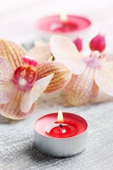 Badekurortstillleben mit roter orange orchidee