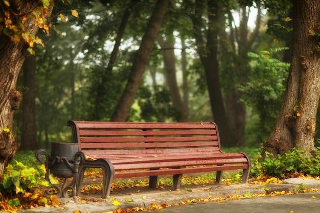 Bänke in der schönen landschaft des herbstparks